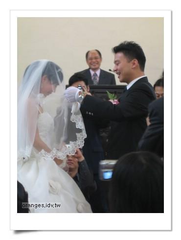 螞蟻的婚禮