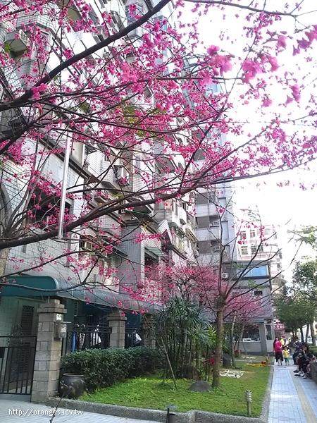 2014春節假期
